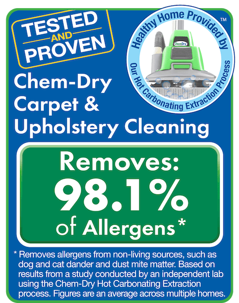 results for upholstery cleaning provo ut