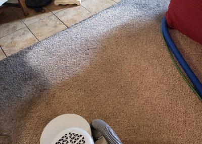 carpet cleaning in salt lake